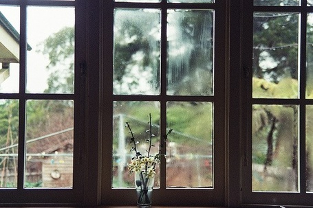 Фото Ваза с цветами на подоконнике