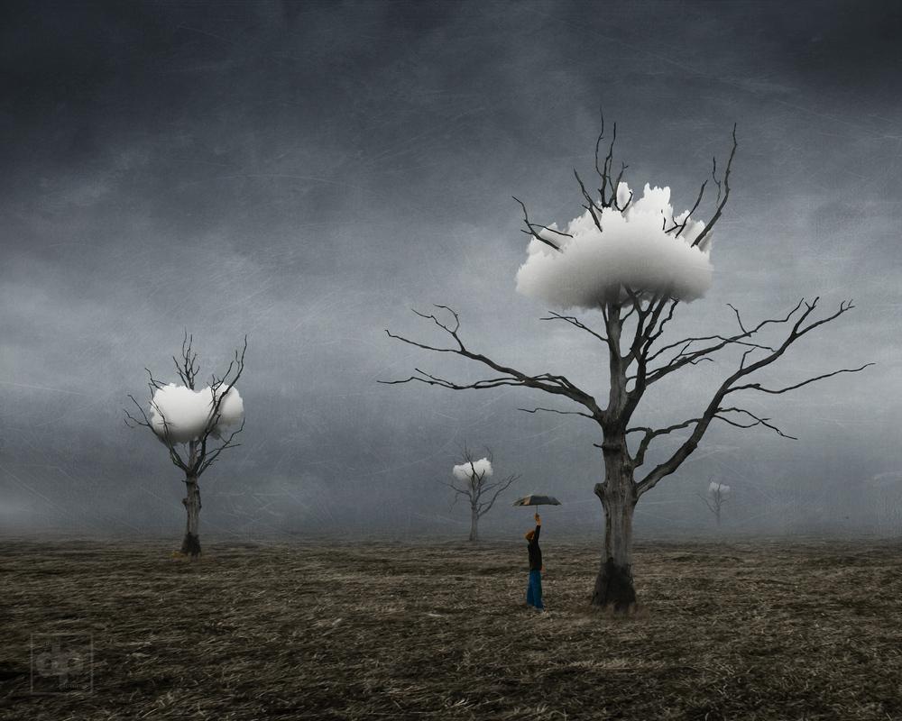 Днем, сюрреалистические картинки деревьев