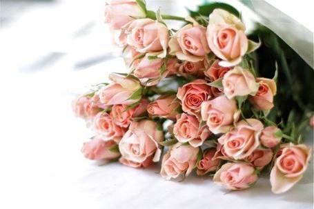Фото Букет роз