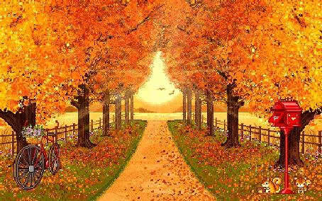Фото Дорога через аллею деревьев осенью