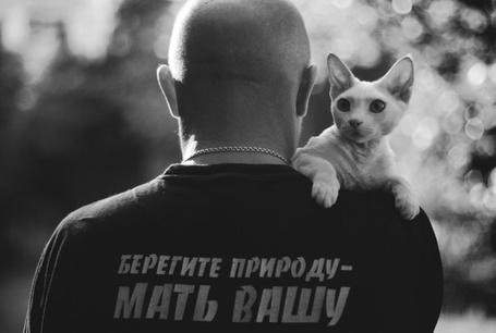 Фото Лысый мужчина в футболке 'Берегите природу - мать вашу' с кошкой на плече