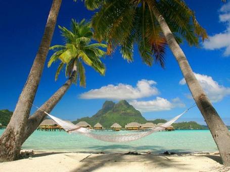 Фото Пальмы, гамак, голубое небо, бирюза в море, бунгало - это рай на земле, куда каждый хочет попасть (© Anatol), добавлено: 21.07.2012 01:39