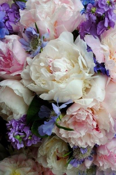 Фото Красивый букет цветов: photo.99px.ru/photos/65881