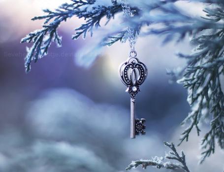 Фото Ключ на цепочке висит на еловой ветке, by lieveheersbeestje (© Лин Суинь), добавлено: 06.08.2012 11:06