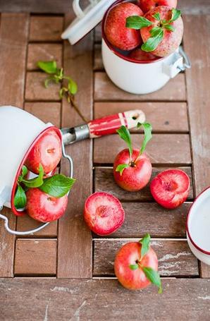 Фото Красные яблоки в кастрюле, чашке, на столе (© Еж-Конопатый), добавлено: 07.08.2012 08:55