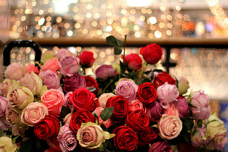 Фото Букет разноцветных роз (© Кофе мой друг), добавлено: 07.08.2012 12:18