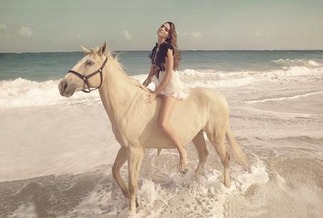 Фото Девушка, сидящая на лошади, гуляет по пляжу (© Sveta_Sherer), добавлено: 08.08.2012 13:18