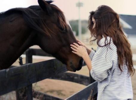 Фото Девушка гладит лошадь (© Mary), добавлено: 11.08.2012 01:36