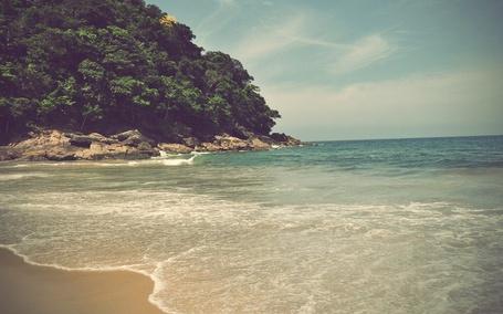 Фото Морское побережье с тропическим лесом неподалеку