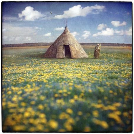 Фото Старик у хижины, стоящей на поляне одуванчиков