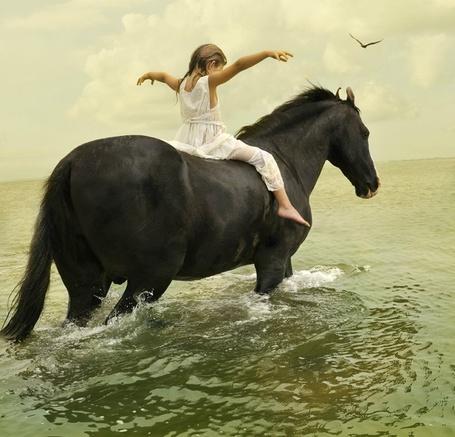 Фото Девочка сидит на лошади которая заходит в воду (© Флориссия), добавлено: 30.08.2012 14:12