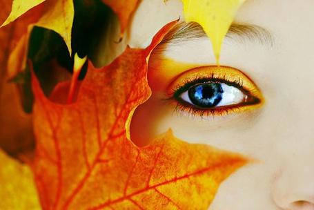 Фото Кленовый лист и глаз девушки с осенним макияжем