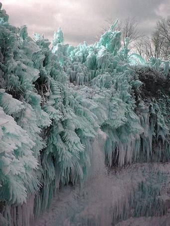 Фото Деревья покрытые льдом и снегом (© Sveta_Sherer), добавлено: 03.09.2012 02:23