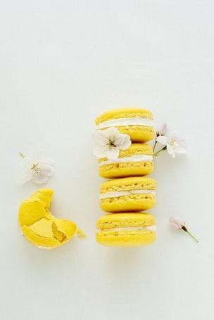 Фото Печенье 'Macarons' и цветы вишни (© Кофе мой друг), добавлено: 08.09.2012 12:14
