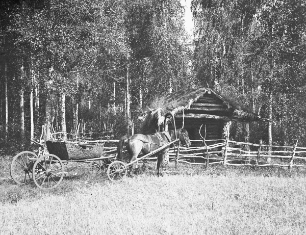Картинка повозка с лошадью