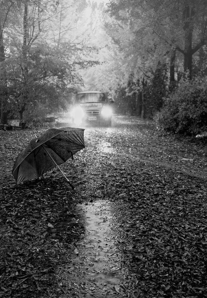 просторная грустные фотки дождь новом