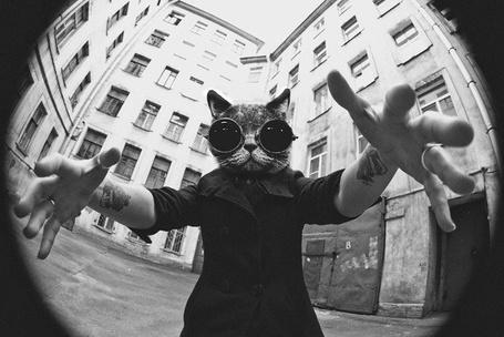 Фото Парень с татуированными руками и с мордой кошки в очках вместо лица тянет руки к камере. Объектив Fish Eye (© Seona), добавлено: 01.10.2012 13:48