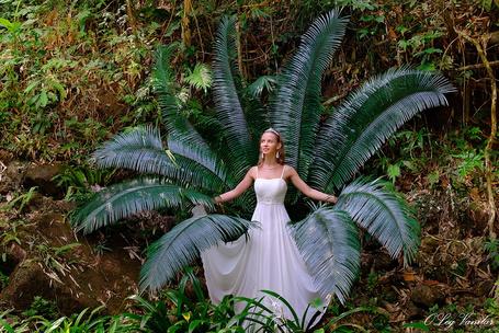 Фото Девушка в длинном белом платье с хрустальной короной на голове поет лесные песни на фоне огромного папоротника