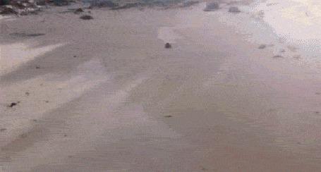 Фото Девушка спускается с песчаной горки в воду на доске для серфинга