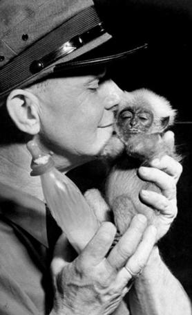 Фото Смотритель зоопарка в фуражке с детенышем обезьяны, 1945