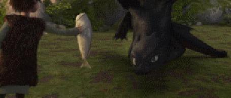 Фото Иккинг протягивает рыбу дракону Беззубику - мультфильм Как приручить дракона / How to Train Your Dragon