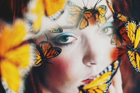 Фото Желтые бабочки на лице девушки, фотограф Ann He (© Radieschen), добавлено: 22.10.2012 17:42