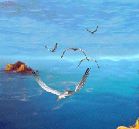 Картинки анимации чайки и море
