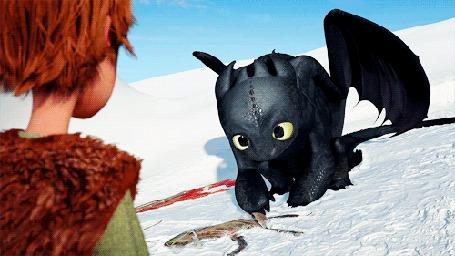 Фото Иккинг и дракон Беззубик  - мультфильм Как приручить дракона / How to Train Your Dragon (© Anatol), добавлено: 25.10.2012 16:04