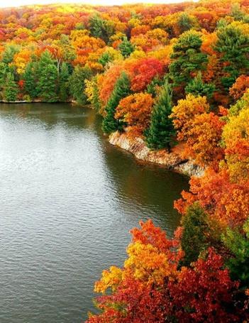 Фото Осенний лес на берегу озера (© Кофе мой друг), добавлено: 28.10.2012 15:53