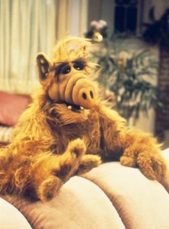 Фото Инопланетянин Альф / Alf из одноименного сериала стоит около дивана