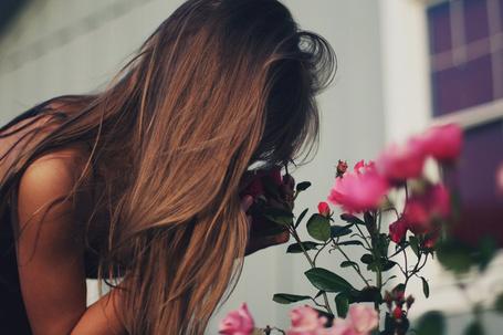 Фото Девушка наклонилась чтобы понюхать цветки дикой розы, фотограф Ann He (© Radieschen), добавлено: 29.10.2012 16:19