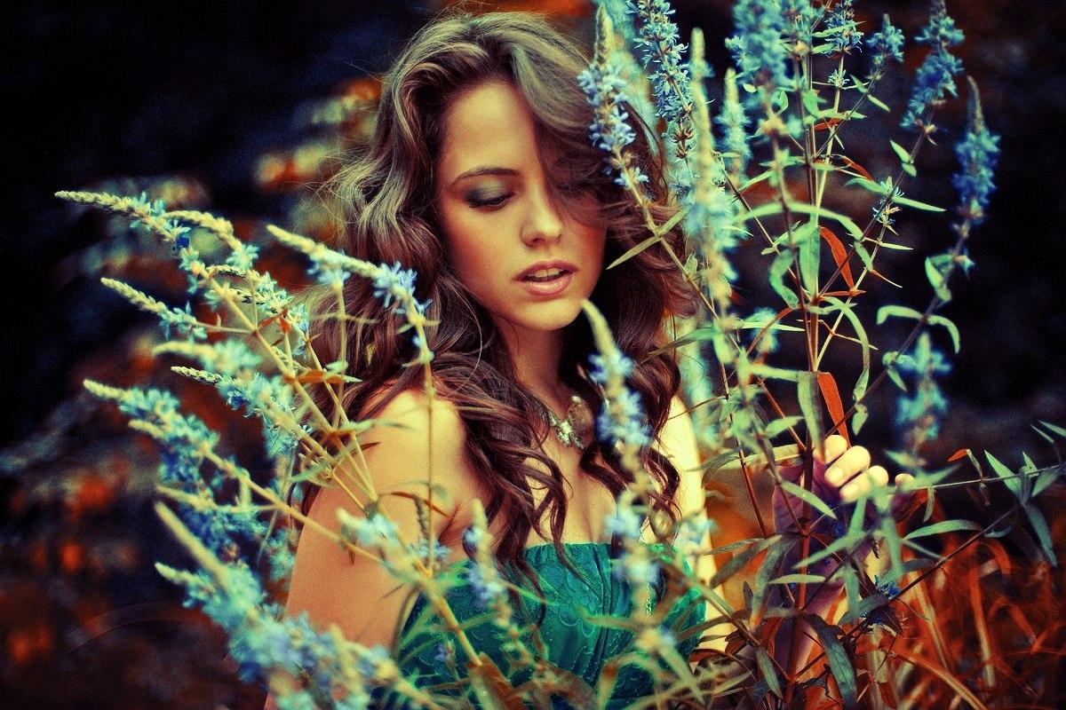 Фото сцены с цветами