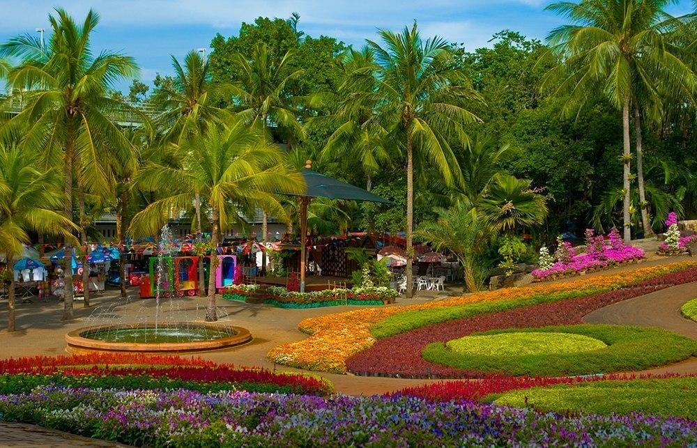 Паттайя ботанический сад нонг нуч