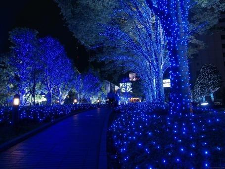 ���� ����� � �����, ���������� ���������� / Tokio, Japan (� Morena), ���������: 22.11.2012 21:14