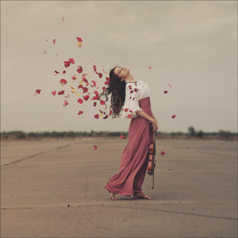 Фото Вокруг девушки со скрипкой летают лепестки роз