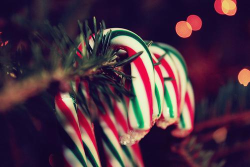 http://99px.ru/sstorage/56/2012/12/image_562712122125252944126.jpg