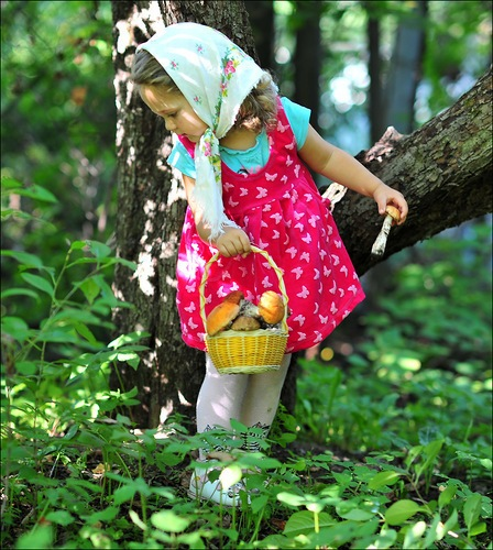 Картинка девочка с корзинкой в лесу