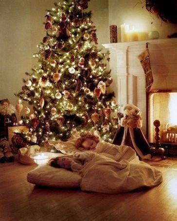 Фото Два малыша спят на полу возле Новогодней ёлки