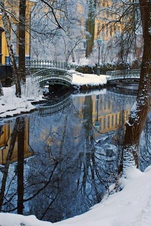Фото Деревья и дома отражаются в воде, зима  в городе