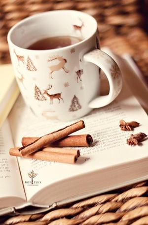 Фото Кружка чая и палочки корицы лежат на раскрытой книге (© Morena), добавлено: 05.12.2012 13:40