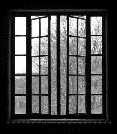 Фото Снегопад за окном (© StepUp), добавлено: 14.12.2012 23:24