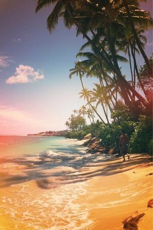 Фото Мужчина шагает по берегу моря под пальмами