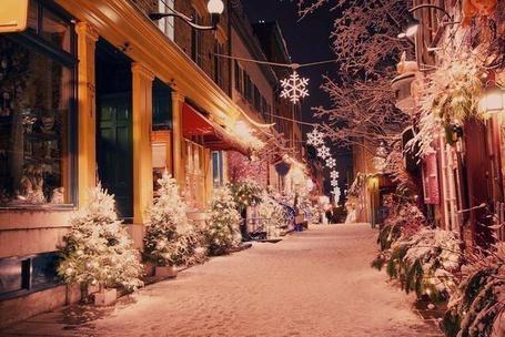 Фото Предновогодняя ночная пустынная улица засыпанная снегом, по бокам стоят небольшие елки
