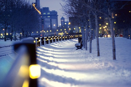 Фото Заснеженный дорога вдоль городского парка
