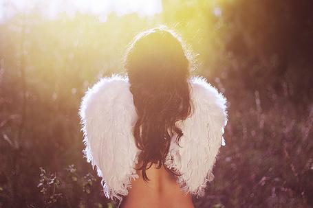 Фото Девушка с крыльями ангела (© Black Tide), добавлено: 20.12.2012 21:00