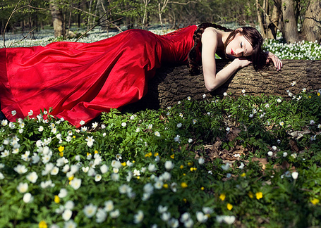 Фото Девушка в красном платье лежит на повалившемся дереве среди подснежников