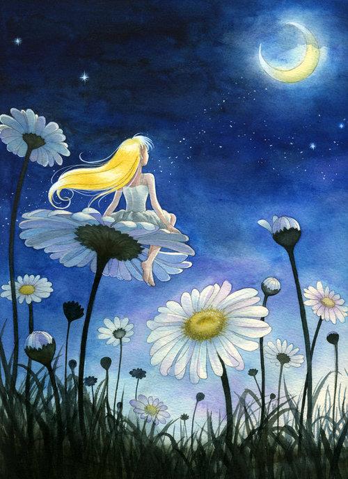 Открытки спокойной ночи ромашки