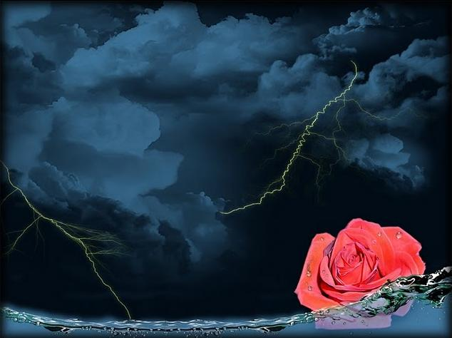 Фото Роза в воде на фоне ночного неба