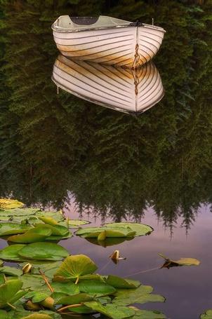 Фото Лодка на прозрачной воде, в которой отражается лес, работа фотографа Карла Уильямса / Karl Williams (© ), добавлено: 02.01.2013 22:47