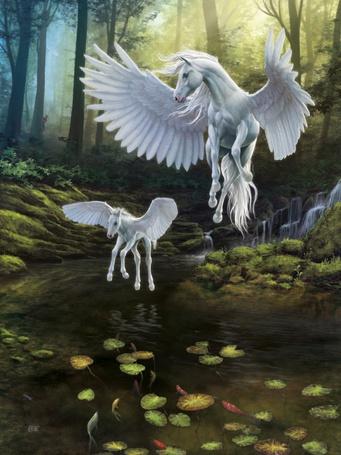 Фото Белые кони с крыльями (пегасы), нежность и счастье материнства